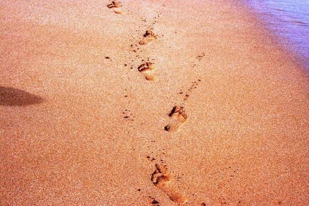 footprints-2237
