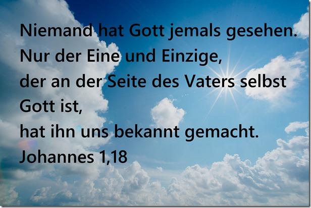 Johannes 1,18